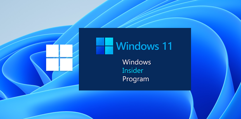 Windows 11 Insider Program
